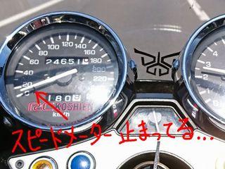 DSC_12272.jpg